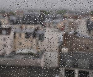 rain, city, and window image
