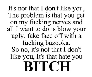 bitch, hate, and quote image