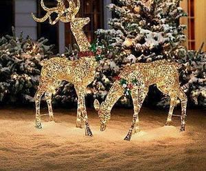 christmas, light, and xmas image