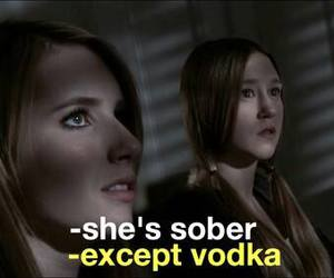 funny, sober, and vodka image