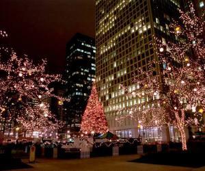 christmas, lights, and xmas image