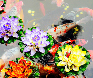 flowers, nature, and fish image