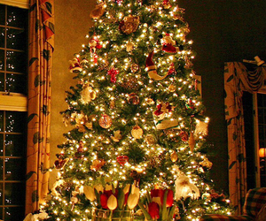 lights, christmas, and tree image
