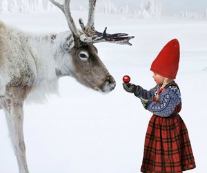 snow, christmas, and reindeer image