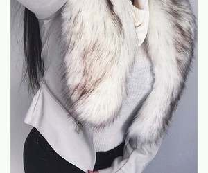 fur and style image