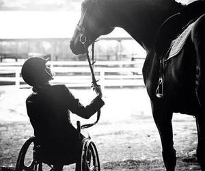 handicap and horse image
