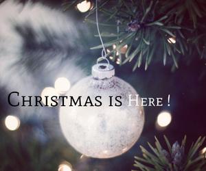 cama, christmas, and ornament image