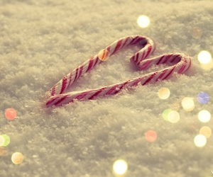 candy cane, pretty, and christmas image