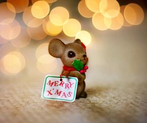 christmas, merry christmas, and mouse image