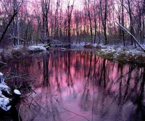 lake, nature, and purple image