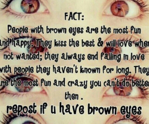 brown eyes, fact, and funny image