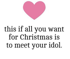 christmas, fan, and meet image