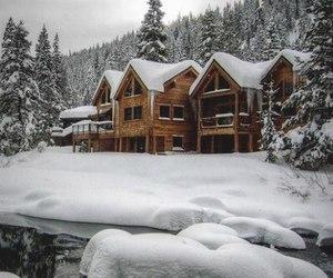snow, snowflake, and winter image