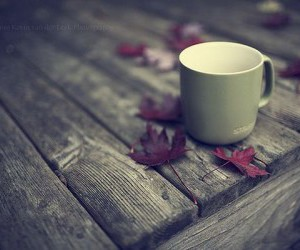 autumn, leaves, and cup image