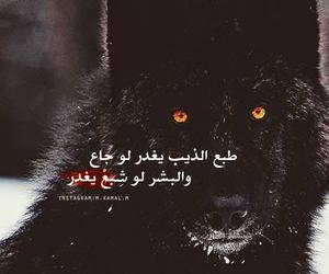 عربي, عرب, and 2014 image