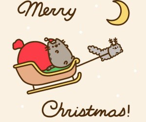 pusheen, cat, and christmas image