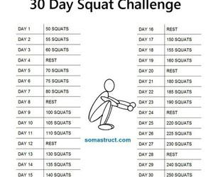 squat image