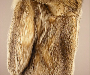 cloak, fur, and wolf image