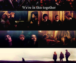 harry potter, together, and hermione image
