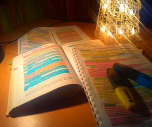 study, study hard, and study time image