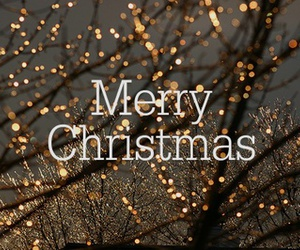 merry christmas and have fun! image