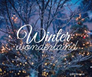 winter and wonderland image