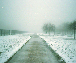 nature, road, and winter image