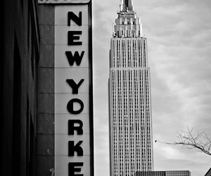 new york, black and white, and nyc image