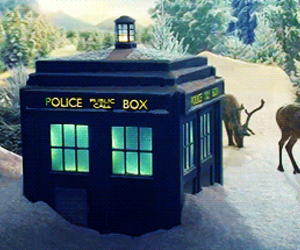 doctor and tardis image