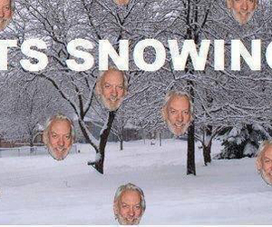 snow, the hunger games, and hunger games image