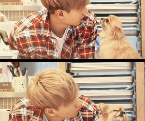 eunhyuk, choco, and super junior image