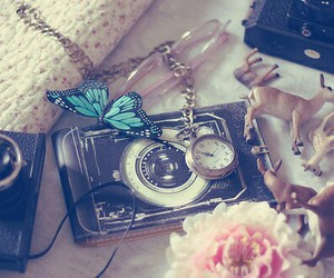 butterfly, camera, and photography image