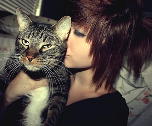 girl, cat, and cute image