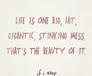 if i stay, quote, and beauty image