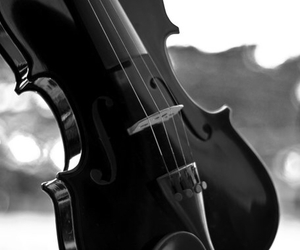 music, violin, and black image