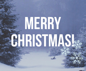 background, christmas, and cold image