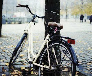 vintage and bicycle image