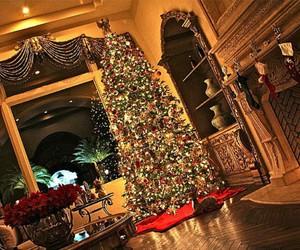 christmas tree and kaylyn slevin image