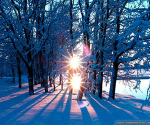 cold, snow, and sun image