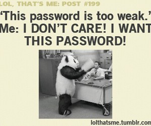 panda, funny, and password image