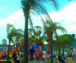 awesomeness, palmtree, and rides image