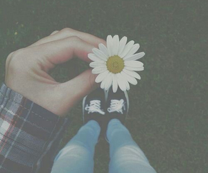grunge, flower, and girl image