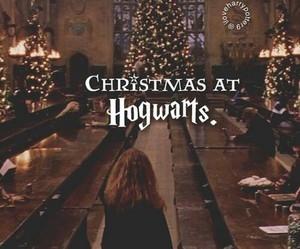amazing, emma watson, and hogwarts image