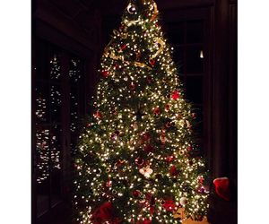 christmas tree and lewis hamilton image
