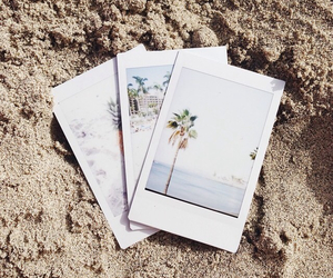 beach, Hot, and palm image