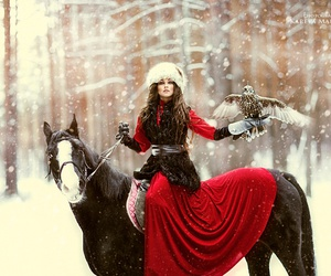 horse, red, and snow image