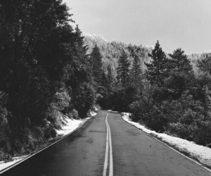 black white, road, and travel image
