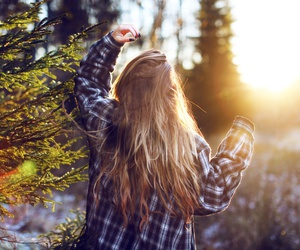 nature, sun, and sunshine image