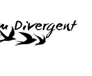 book, movie, and divergent image
