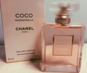chanel, christmas, and coco image